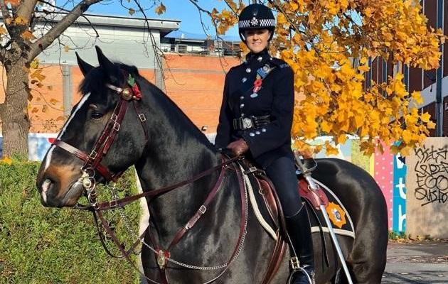 Police horse is named after Wellington
