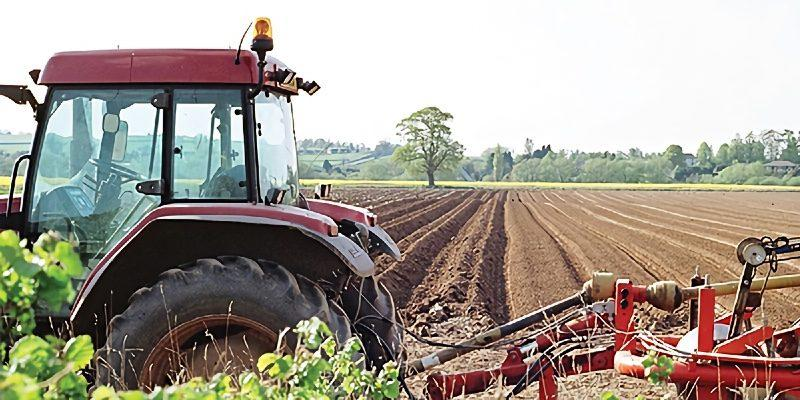 Taunton farmers delighted by the Agricultural Bill 2
