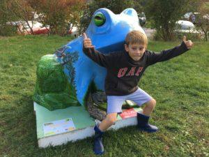 taunton toad trail auction 2