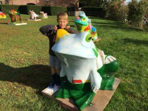 taunton toad trail auction 5