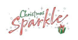 the christmas sparkle project