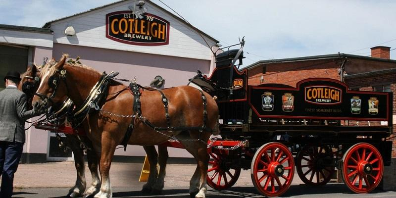 tone news cotleigh brewery is 40 years old