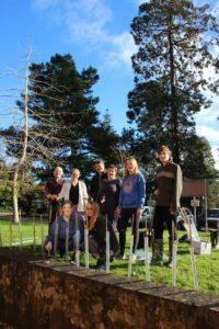 tone news huish tree planting project