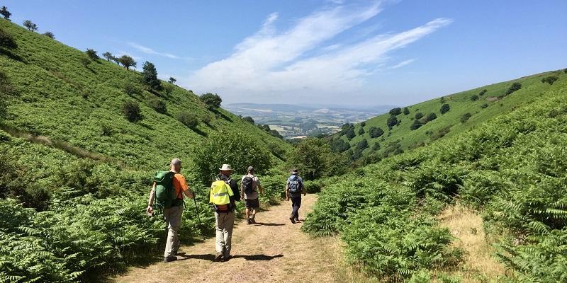 tone news the quantock hills walking festival