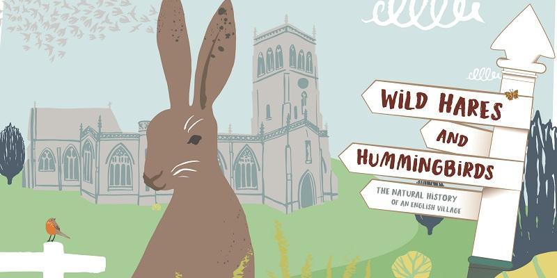 tone news wild hares and hummingbirds